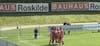 DIF melder FC Roskilde til politiet i matchfixingsag - se alle højdepunkterne fra kampen mod Lyngby her