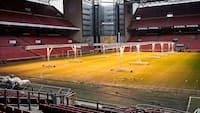 Efter kritik: Parken prøver med ny type græstæppe