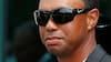 Tiger Woods erkender sig skyldig: Nu skal han i rehabilitering - testes for stoffer