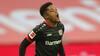 To mål og en assist fra Bailey i Leverkusens 3-0-sejr over Köln - se højdepunkterne