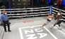 Spøjs situation: Kæmpe kæberasler sender bokser til jorden - vurderes til ikke at være et knockdown