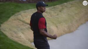 Så du det? Tiger Woods laver KNIVSKARPT chip in på 17. hul - Mickelson misser med et mulehår