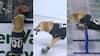 Mest bizarre og skøreste pauseunderholdning nogensinde? Hund stjæler overskrifter i NHL