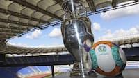 UEFA vil udligne EM-forurening med 600.000 træer