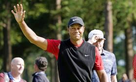 Tiger Woods udtager sig selv til Presidents Cup