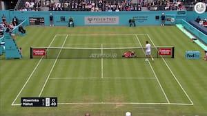 Av, av! Tennisspiller modtager drilsk bold og smadrer kroppen ind i nettet