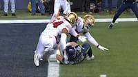 Vildt drama: Seahawks er centimeter fra at slå 49ers med 9 sekunder tilbage - se alle scoringer her