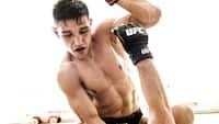 Damir Hadzovic' UFC-kamp mod Medeiros er udsat til en anden dato