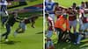 Championship-klub får stor bøde efter hæsligt overfald på Aston Villa-stjerne