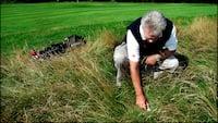 Slut med golf - DGU anbefaler, at golfklubberne lukker