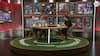 Liverpool-fan med stor Ancelotti-ros: Han gør de simple ting