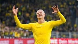 Erling Haaland koster mere end halvdelen af Bundesligaen