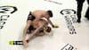 Bizar fight! MMA-kæmper total bovlam på gulvet og bliver udgraderet fuldstændig