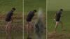 Waliser smider bukserne, hopper i søen og bliver sjasket til