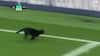 Retro: Det var kattens - Baneløberen ingen kunne fange på Goodison