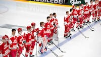 Mangeårig læge for ishockeylandsholdet er død