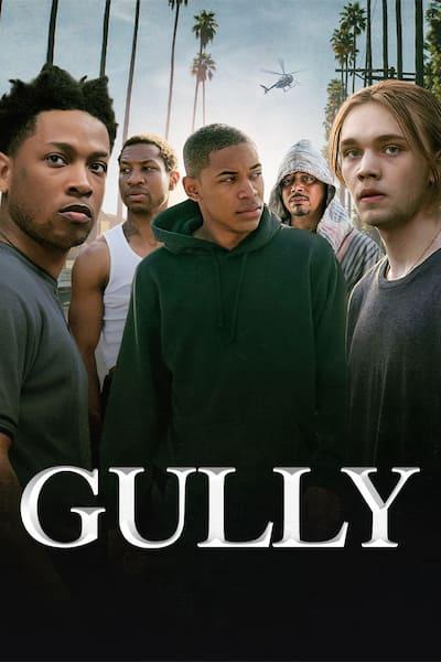 gully-2019