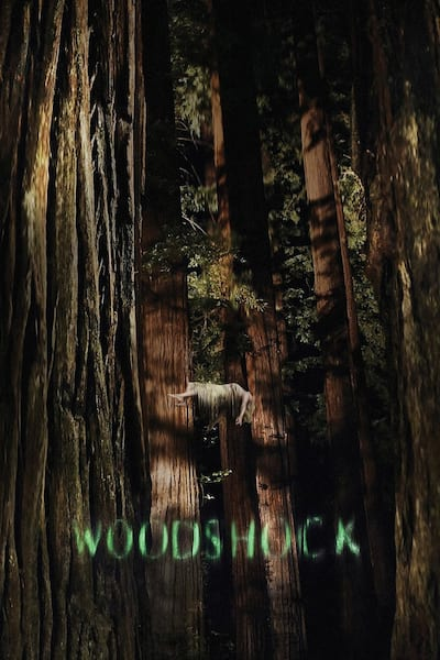 woodshock-2017