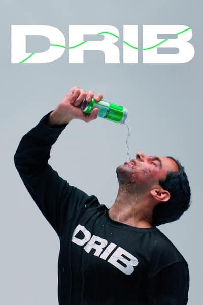 drib-2017