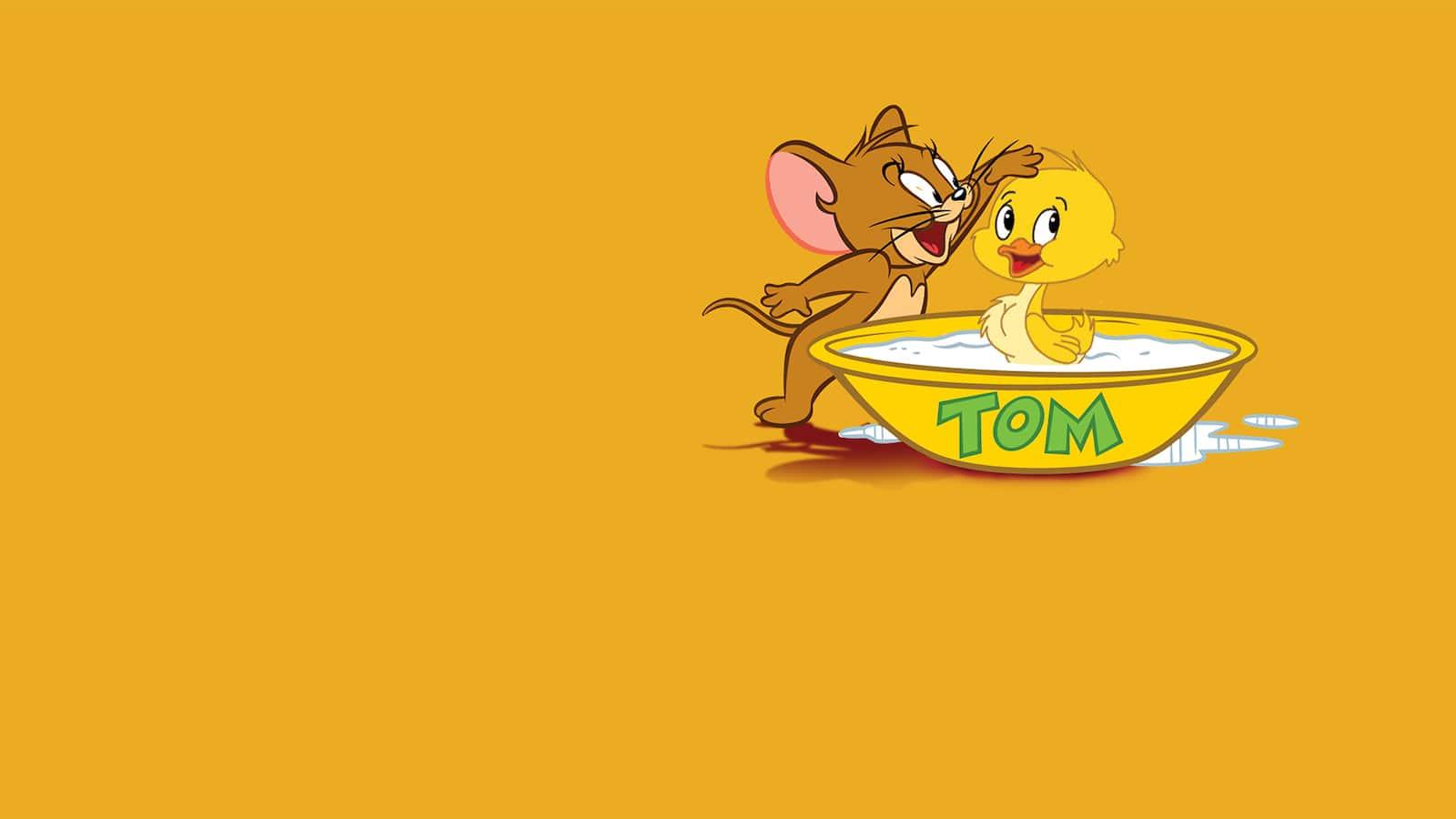 tom-and-jerry-folj-ankan-2013