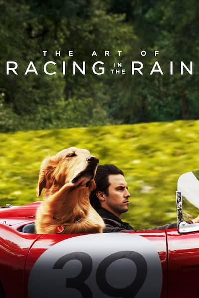 the-art-of-racing-in-the-rain-2019