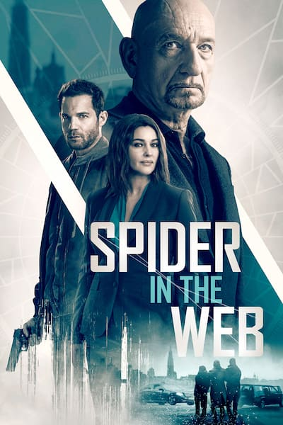 spider-in-the-web-2019