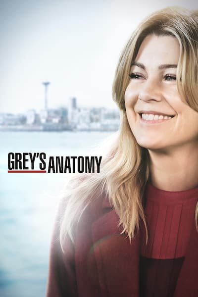 greys-anatomy/sesong-14/episode-8