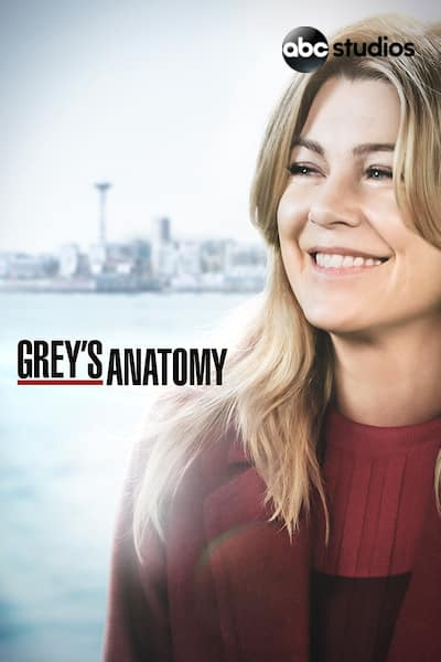greys-anatomy/sesong-15/episode-25