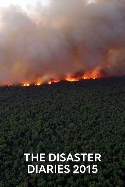 the-disaster-diaries-2015-2015
