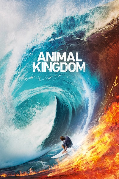 animal-kingdom