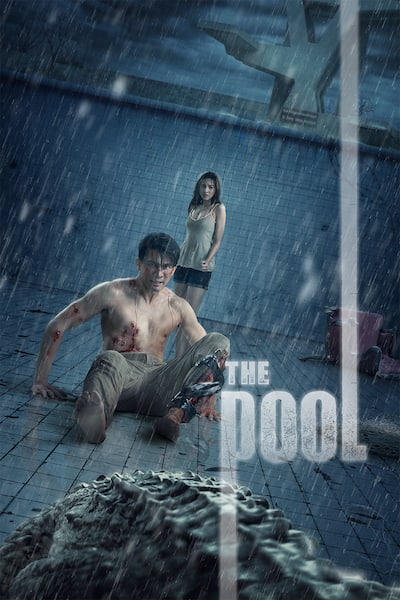 the-pool-2019