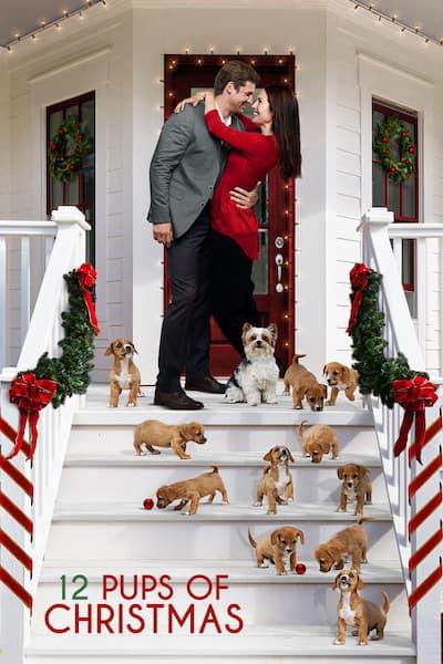 12-pups-of-christmas-2019