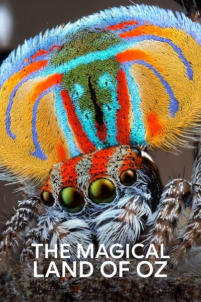 magiska-australien-det