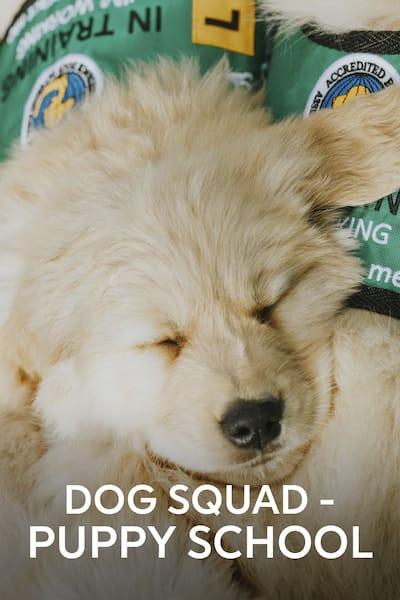 hundpatrullen-valpskolan
