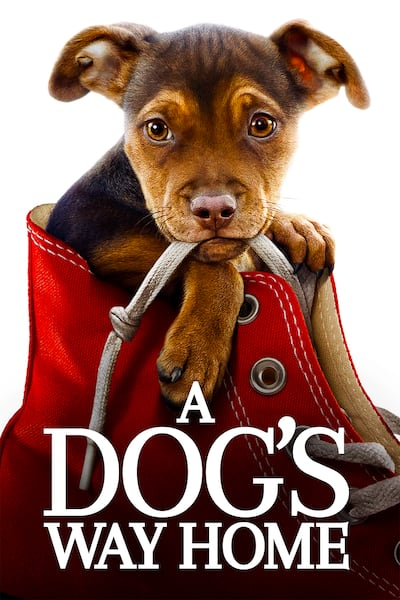 a-dogs-way-home-2019