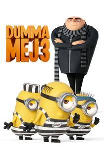 dumma-mej-3-2017