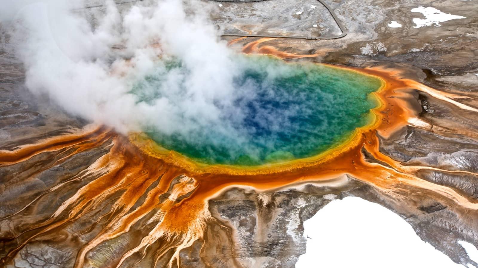 wild-yellowstone
