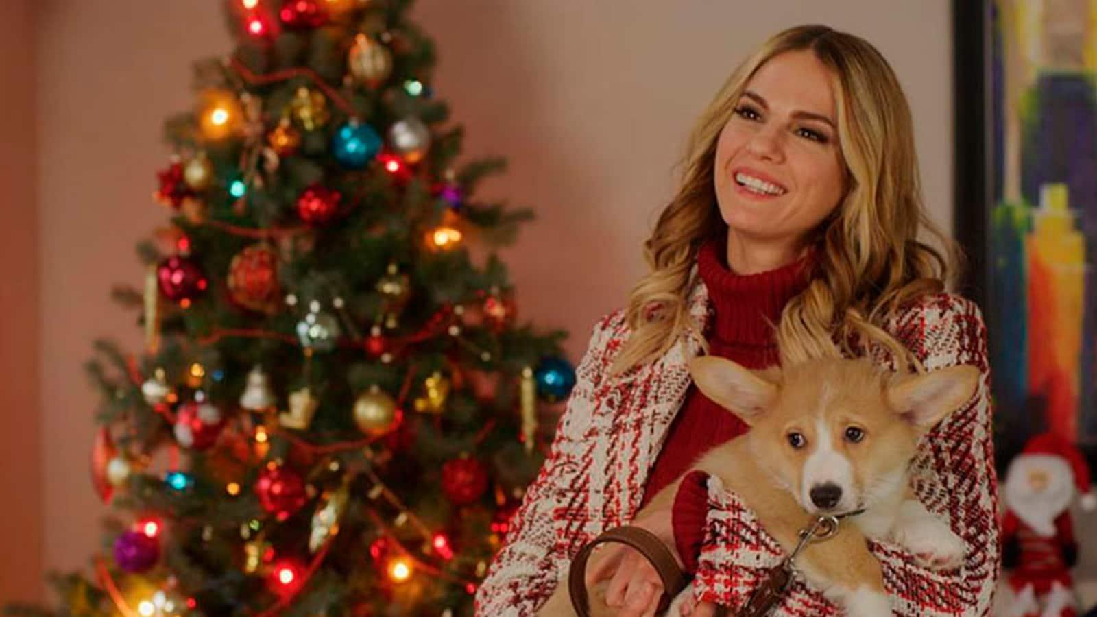 a-very-corgi-christmas-2019