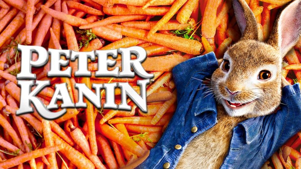 Speed dating for kaniner