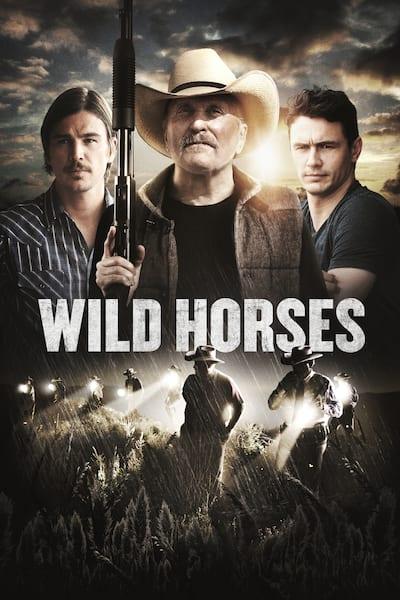 wild-horses-2015