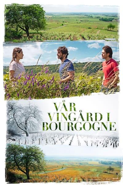 var-vingard-i-bourgogne-2017