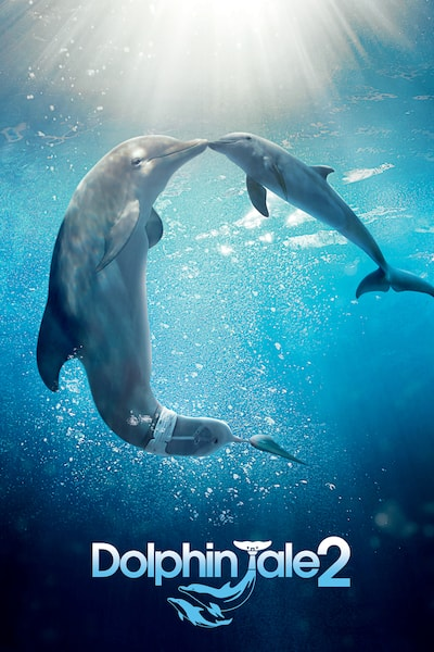 dolphin-tale-2-2014