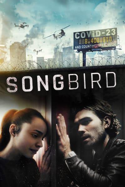 songbird-2020